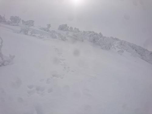 越後白山6.jpg